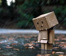 sadness in the rain